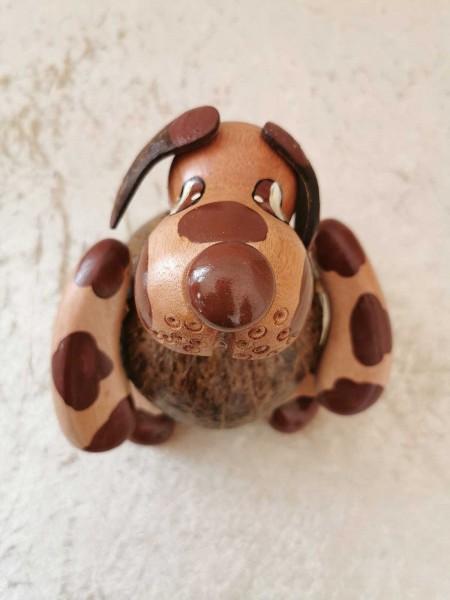Kokos-Spardose Hund