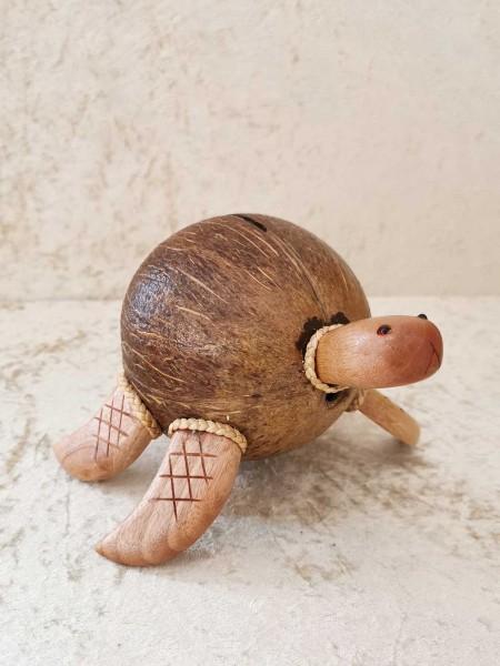 Kokos-Spardose Schildkröte